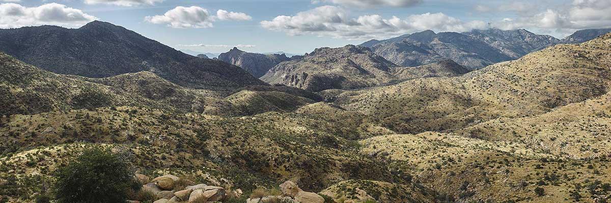 Photo Of Arizona Desert
